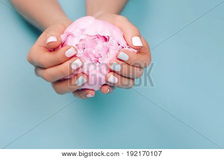 Stylish trendy female manicure. Peony flower in beautiful young woman's hands. Blue background.