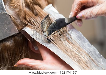 Color and weave hair in a beauty salon . A photo