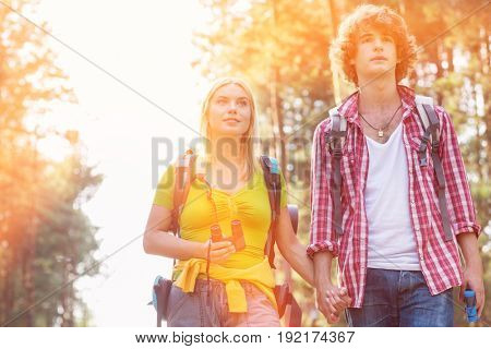 Young couple looking away while hiking in forest