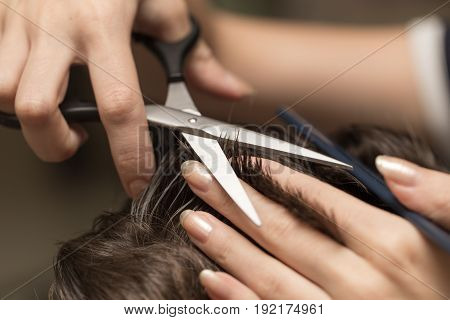 men's hair cutting scissors in a beauty salon