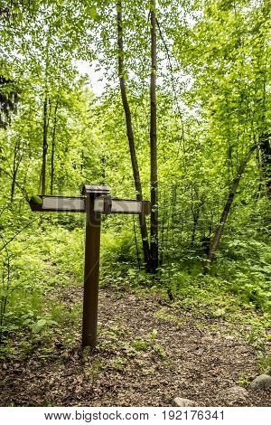 Wooden signpost with arrows beside the path in the summer forest.
