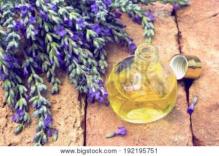 Lavender oil with fresh flower branches on brick surface