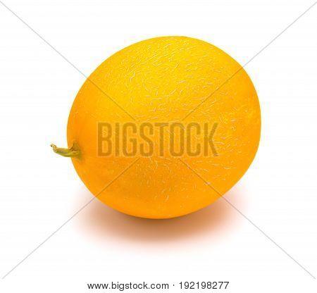 fresh yellow melon on a white background