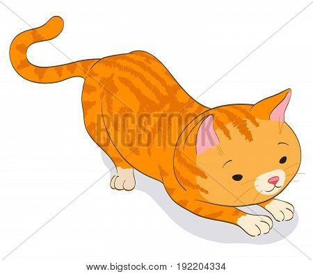 red tabby little cat in catching pose. cartoon vector illustration