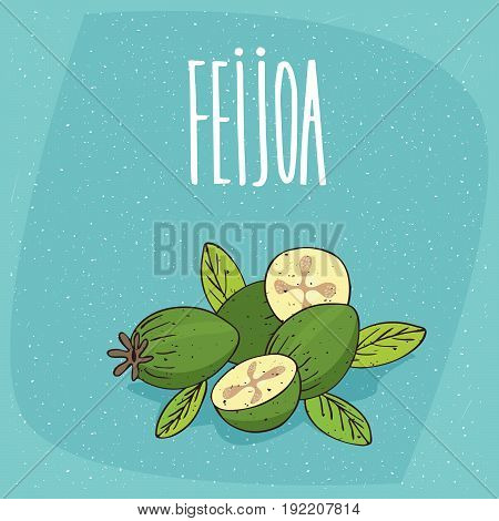 Isolated Ripe Pineapple Guava Fruits Or Feijoa