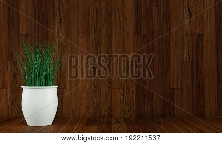 Wood wall interior with plant vase on dark floor. 3d rendering