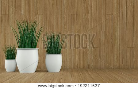 Wood wall interior with plant vases on bright floor. 3d rendering