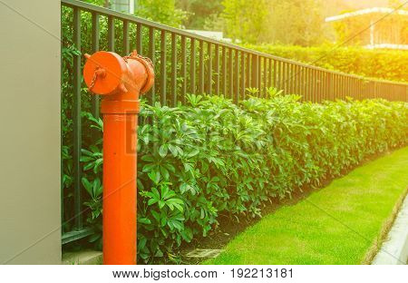Red fire hydrant with metal fence  plant exterior design