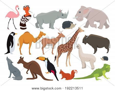 Cute wild animals in cartoon style. Vector illustration set isolate on white. Animal wild cartoon, zoo wildlife character rhinoceros and elephant