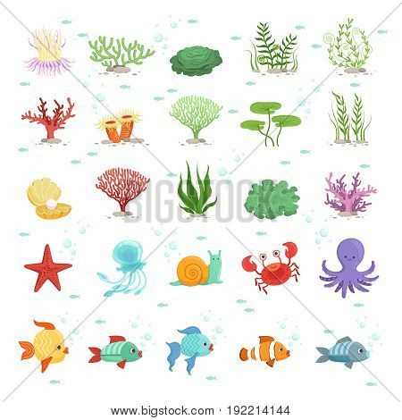 Marine animals, fishes collection and underwater plants. Aqua wild fauna. Vector illustration. Fish and fauna underwater, nature octopus and sea snail