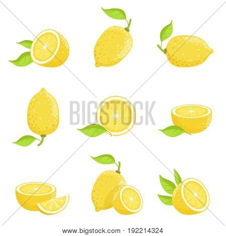 Lemon with slices. Fresh yellow fruit in cartoon style. Vector picture isolate on white. Lemon fruit fresh with green leaf illustration