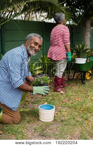 Portrait of smiling senior man holding plant while kneeling on field in backyard