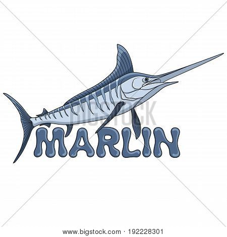 Colored illustration of a marlin fish and an inscription. Isolated vector objects on white background.