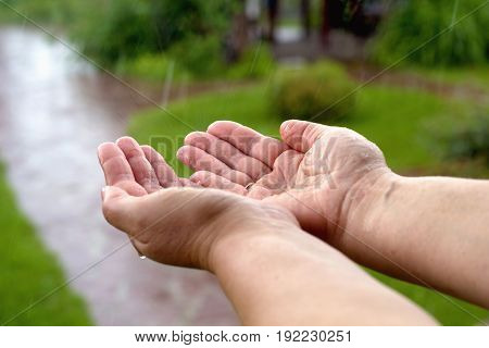 close up of female Hands get wet in the rain