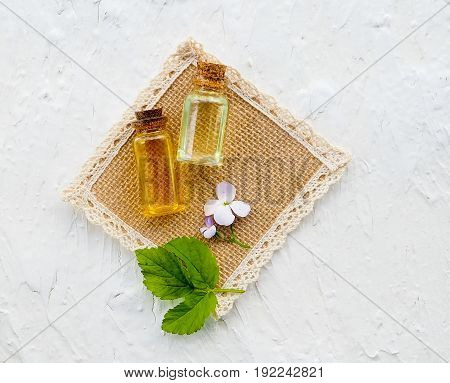 Bottle Of Essential Oil With Fresh Herbal Sage, Setup With Flat Lay Alternative Medicine, Health, Vi