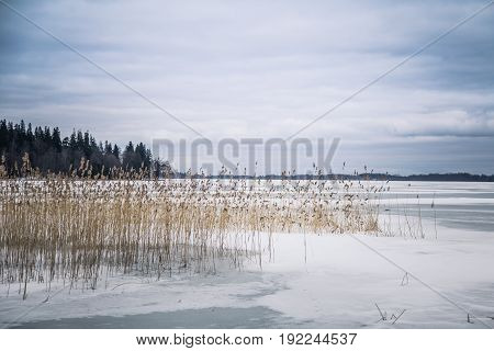 A Peaceful Winter Landscape With A Frozen Lake In Overcast Day