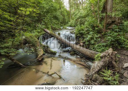 Roztocze (Roztochia) National Park. Cascades on Sopot river. Czartowe Pole (Devil's Field) reservation.