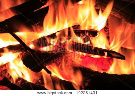 Close up of burning logs in fire