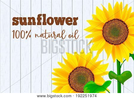Sunflowers on white wooden background vector illustration. Banner with sunflower for oil product, eco oil from sunflower. For cooking, advertising, tags, labels, promotion