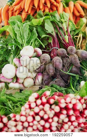 Beets And Turnips On Farmer Market In Paris, France