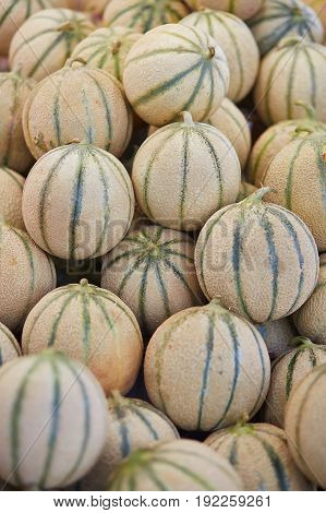 Melons On Farmer Market In Paris, France