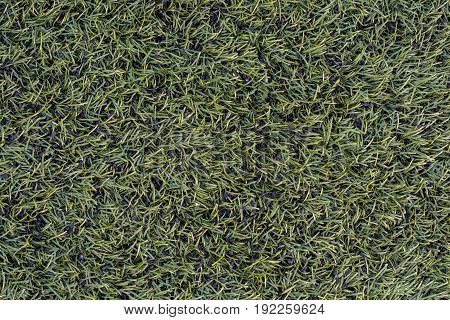 Green Artificial turf background with splashes of black adsorbent