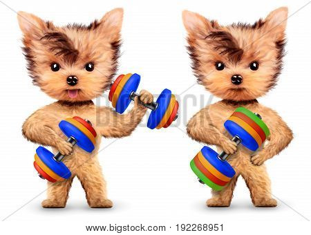 Funny dogs training with dumbbell in sport gym. Concept of sport and fitness. Realistic 3D illustration.