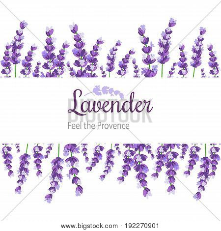 Lavender Card with flowers. Vintage Label with provence violet lavender. Background design for natural cosmetics beauty store health care products perfume. Can be used as wedding background.