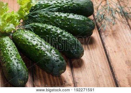 Fresh Cucumbers On Wooden Background.
