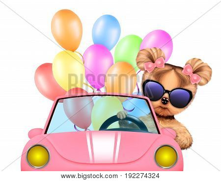 Funny dog sitting in the car with balloons, isolated on white background. Vacation and travel concept concept. Realistic 3D illustration