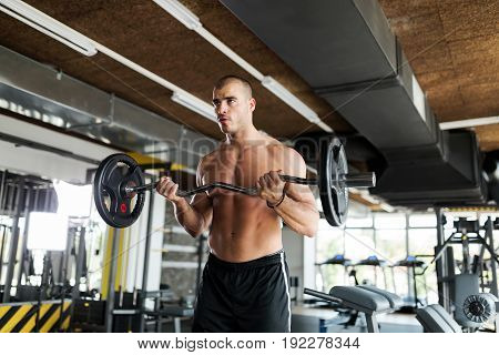 Muscular bodybuilder workout in gym doing biceps exercises with bar