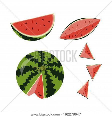 Vector illustration of whole ripe red fruit watermelon, cut half, sliced slice berry with red flesh isolated on white background.
