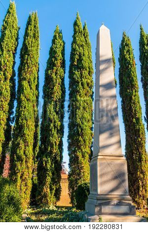 Marble obelisk and several cypresses behind it on the Oakland Cemetery in sunny day Atlanta USA