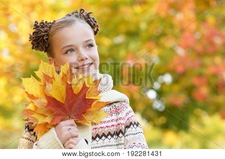 portrait of pretty little girl resting in autumnal park
