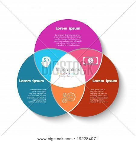 Vector circle infographic template. Business concept with 3 options parts steps or processes.