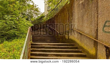 old dirty stairs leading into the forest