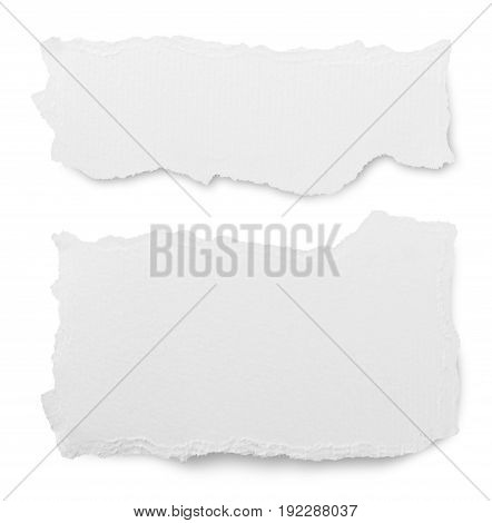 White background paper isolated paper texture torn paper nobody