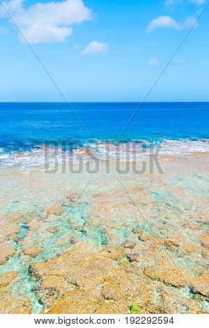 Tropical patterns and colors of coral reef sea and sky
