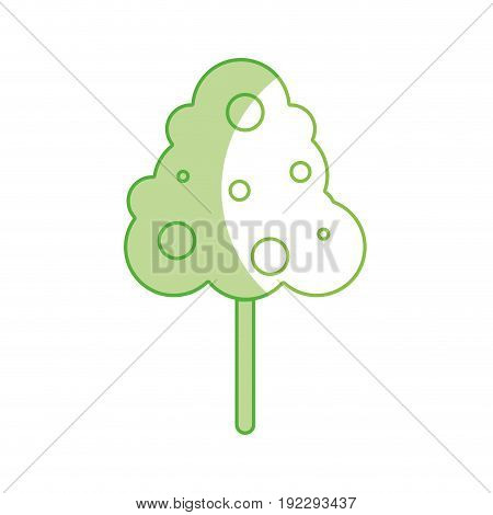 silhouette natural tree with fruits botany icons vector illustration