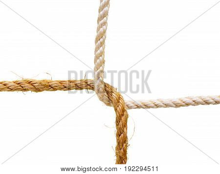Two linked ropes cross section. Isolated on white