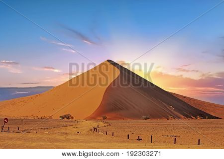 Dune 45 in Namib Naukluft - Sossusvlei at sunrise with a pink and blue hazy sky, Namibia, Southern Africa