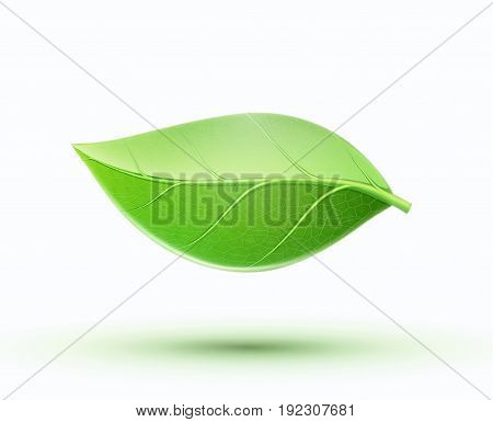 Vector illustration of eco concept icon with glossy green leaf. May be used in ecological medical chemical food and oil design.
