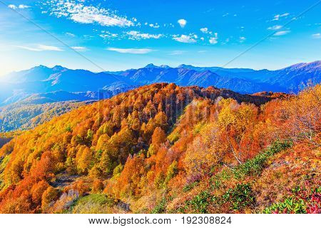 Autumn mountain forests at sunset time. Caucasus. Russia.