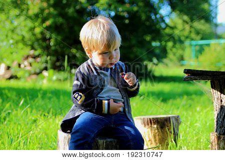 the little boy in the garden eating cherries