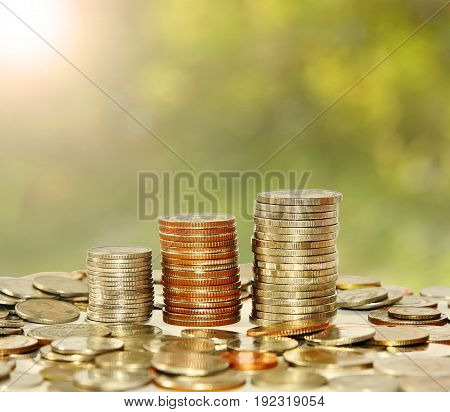 Finance and save money concept Money coin stack growing graph with sunlight on natural background