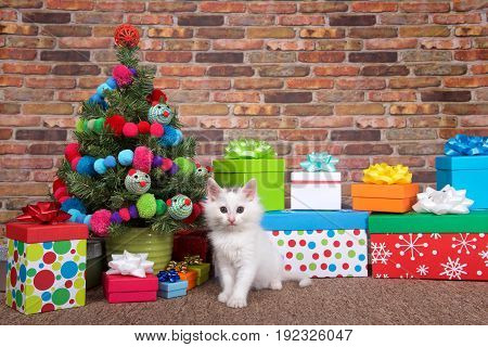 Fluffy white kitten sitting on brown carpet next to Christmas tree decorated with yarn balls and toy mice surrounded by bright colorful presents. Brick wall background