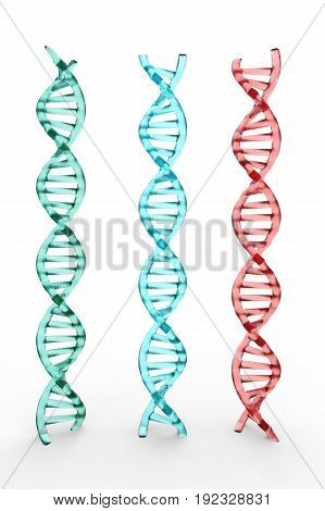 3d rendering three dna structures on white background