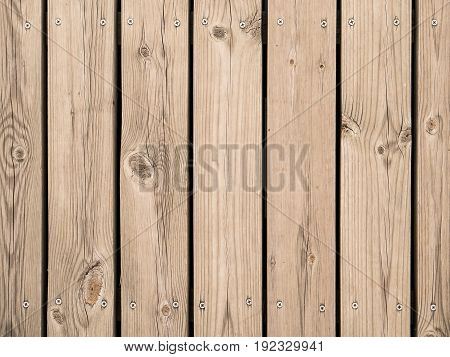 Timber Wall With Screws