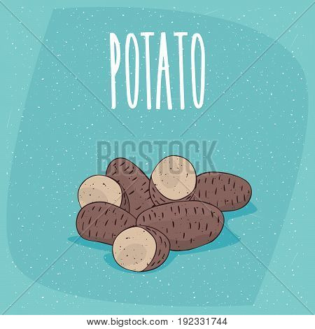 Isolated Ripe Russet Potato Tubers Whole And Cut