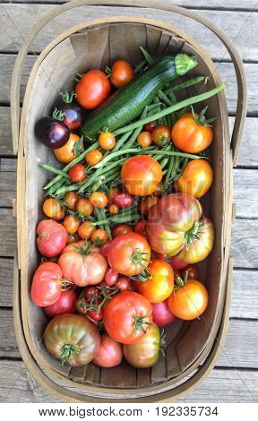 Garden trug harvest basket with homegrown vegetables tomatoes beans zucchini